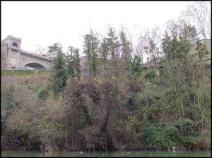 Lugar del avistamiento (20-12-2012)