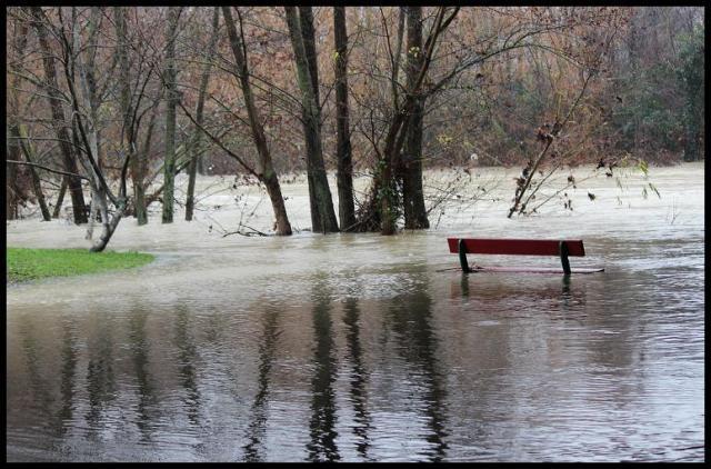 Paseo fluvial cubierto por el agua (16-1-2013)