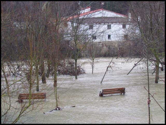 Imagen del paseo fluvial (16-1-2013)