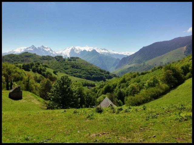 Último paisaje que vimos en el Pirineo; Itziar Almarcegui (4-6-2013)