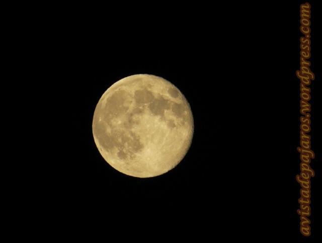 Luna llena (23-7-2013)