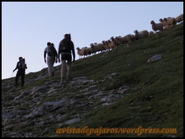Terminando nuestra ascensión (1-8-2013)
