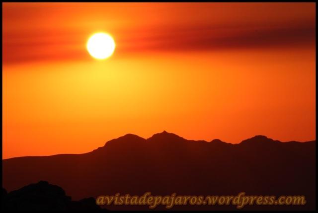 El sol poco a poco iba ganando altura (1-8-2013)