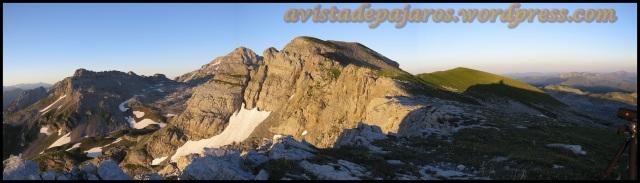 Pirineo (1-8-2013)