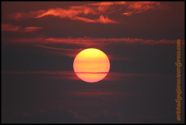 Sol al amanecer (29-8-2013)