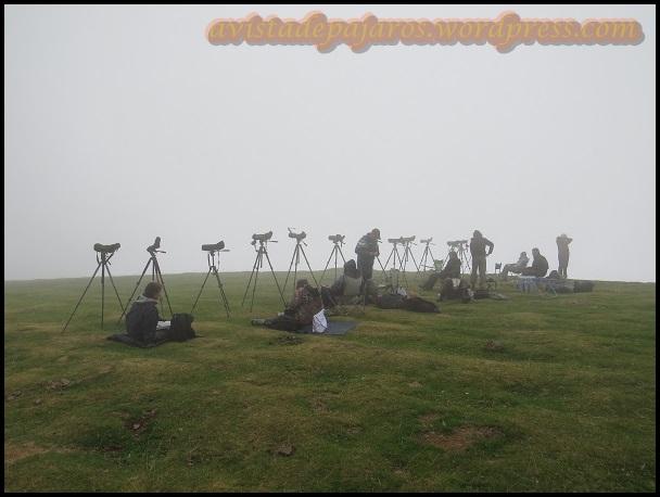 Ante tanta niebla esperabamos tranquilos a que levantase (29-8-2013)