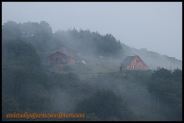 Nieblas en los chalets de Irati (29-8-2013)
