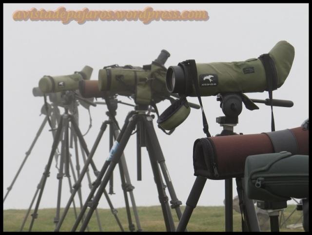 Varios de los telescopios que se acumularon en la zona a lo largo del día (29-8-2013)