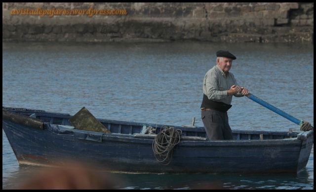 Pescador (13-10-2013)