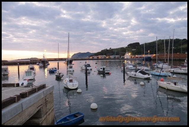 Amanecer en el puerto de Bermeo (13-10-2013)