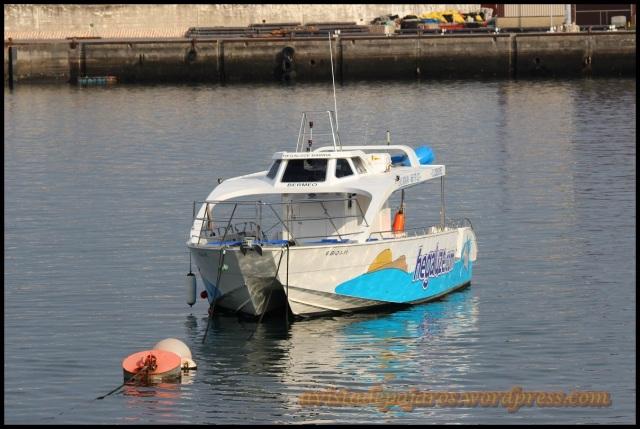 Barco en el que se realizó la excursión (13-10-2013)