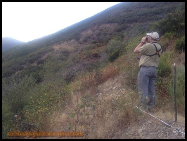 Prospeccionando la zona (26-9-2013)