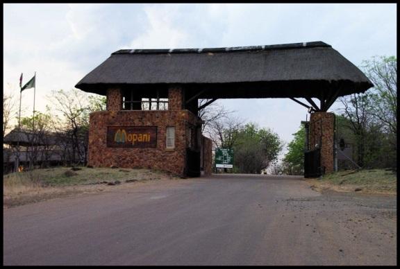 """Puerta de entrada a """"Mopani"""" (1-11-2013)"""