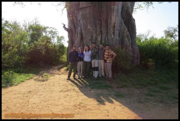 Los seis en el baobab (5-11-2013)