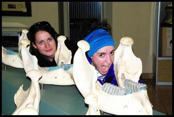 Amaia y María y varias mandíbulas; Koldo Azedo (2-11-2013)