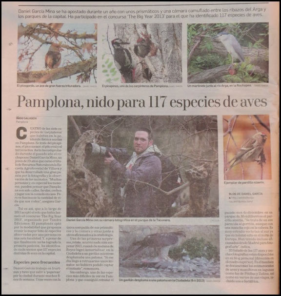 Diario de Navarra (19-1-20114)