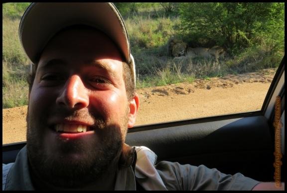 Servidor con uno de los leones al fondo (7-11-2013)