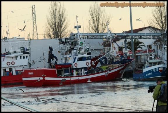 Barco perquero siendo observado por David (4-2-2104)