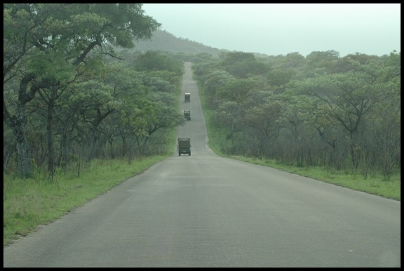 Coches en el Kruger; Koldo Azedo (9-11-2013)