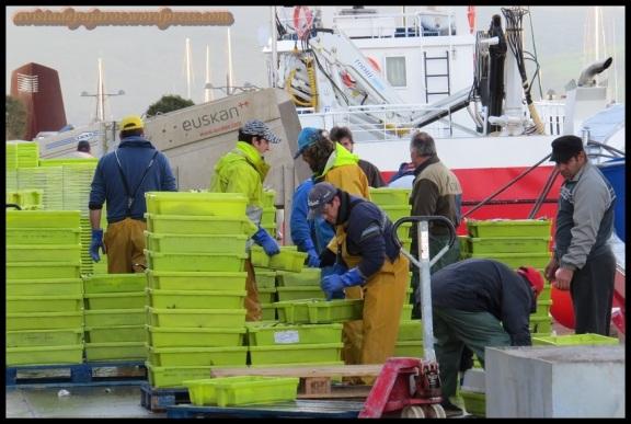 Pescadores echando los deshechos (4-2-2014)
