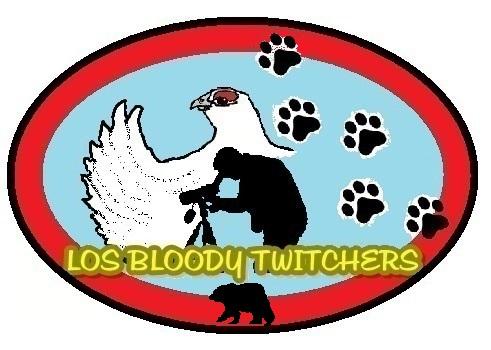 """Bloody twitchers"""