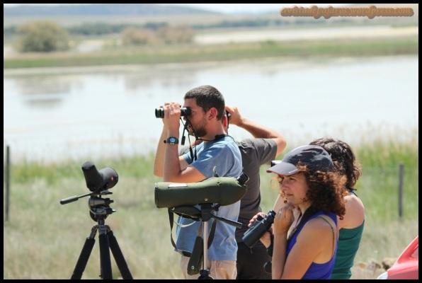 Buscando nuevas especies (10-5-2014)
