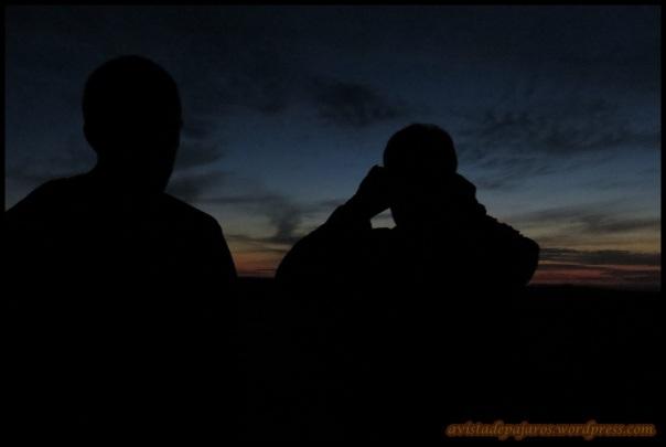 Escuchando todavía de noche (10-5-2014)