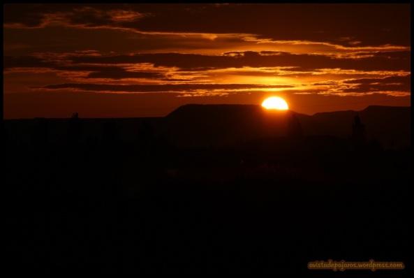 Sale el sol por la mañana (11-10-2014)