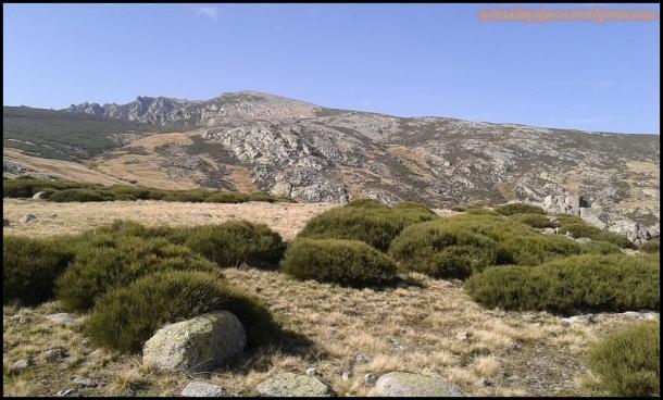 Paisaje de Gredos (1-11-2014)