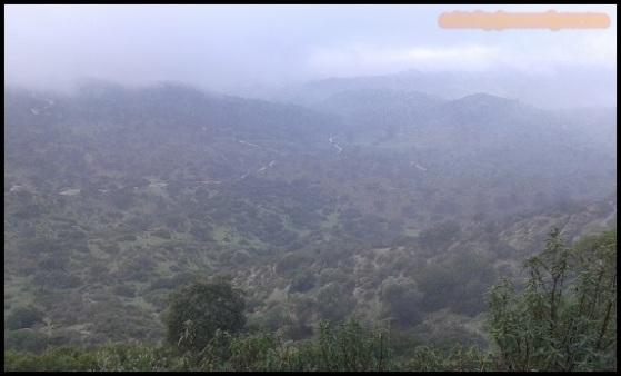 Nieblas (5-12-2014)