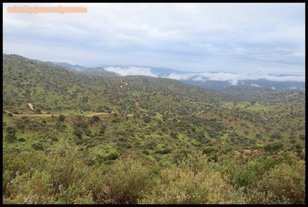 Uno de los paisajes que exploraba a diario (4-12-2104)