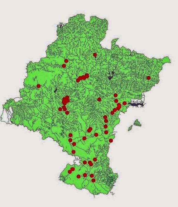 Mapa de Navarra con zonas de avistamientos