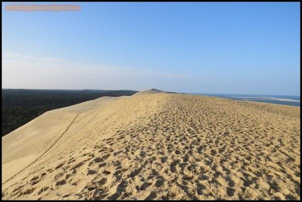 Vistas desde lo alto de la duna (22-3-2015)