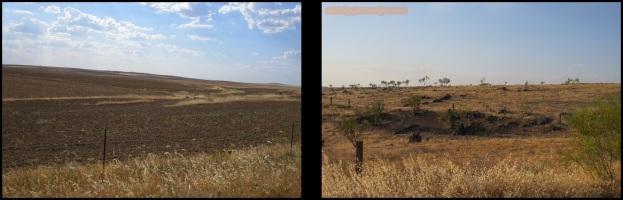 Zonas a otear (28-5-2015)