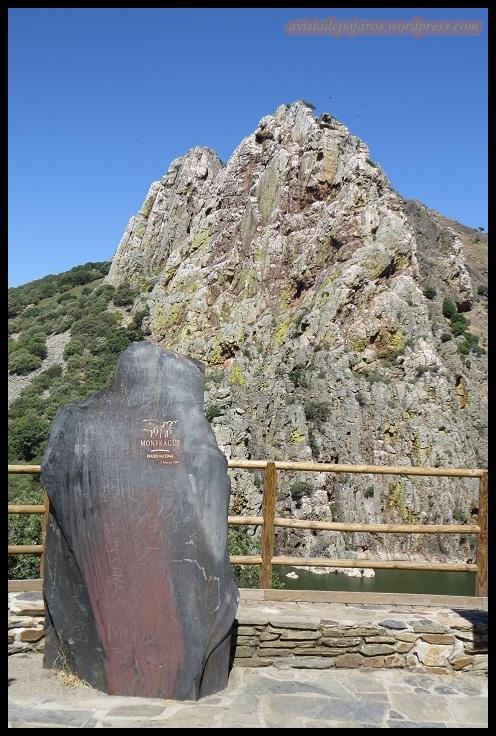 Salto del Gitano, conocido mirador de Monfragüe (26-5-2015)