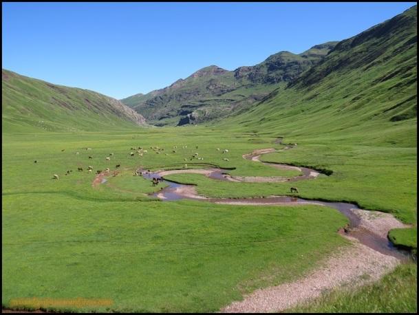 Valle de Aguastueras (24-6-2015)