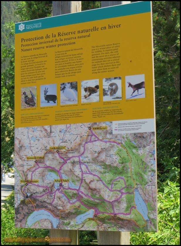 Cartel informativo con las diferentes especies (15-7-2015)
