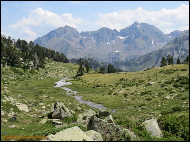 Zona de regata en praderas alpinas (15-7-2015)