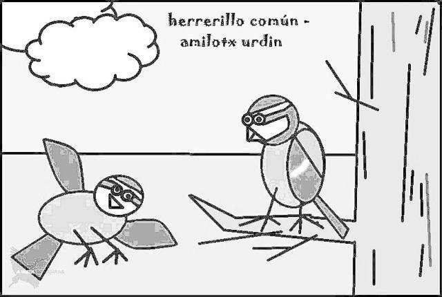 Herrerillo