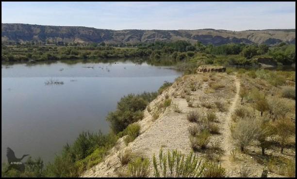 Lagunas de Velilla (25-9-2015)