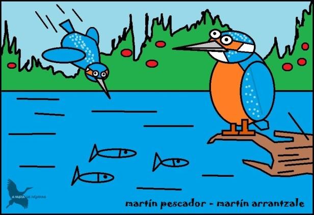 Martín pescador - Martín arrantzale