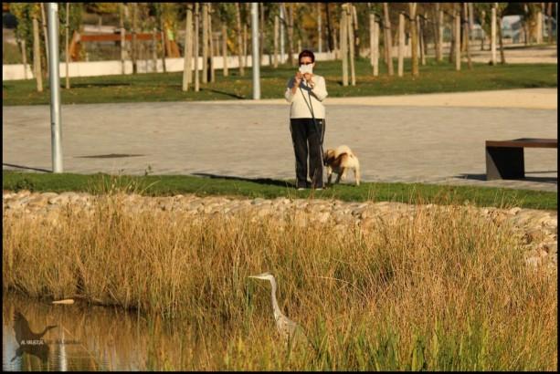 Mujer fotografiando a la garza (30-10-2015)