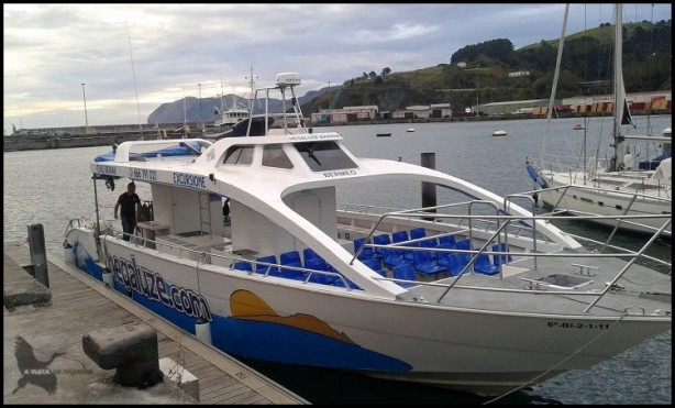 """""""Hegaluze"""", barco de la visita marina (18-10-2015)"""