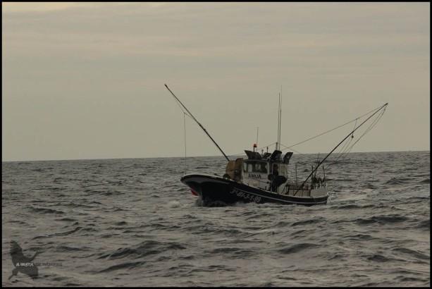 Pesquero en alta mar (18-10-2015)