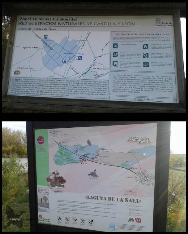 Carteles de La Nava (28-10-2015)