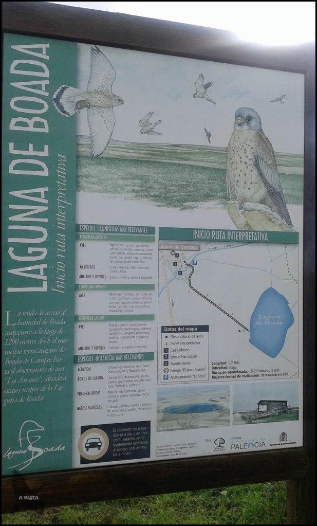 Cartel de laguna cercana (28-10-2015)