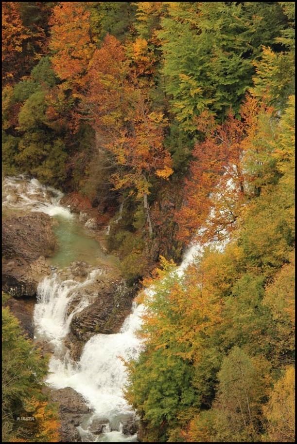 Zona de río en los cañones (13-10-2015)