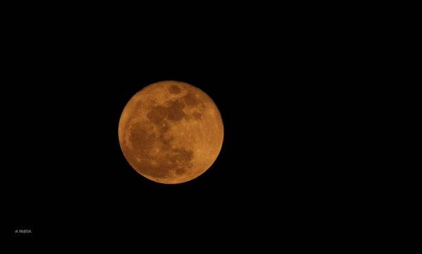 La luna alumbraba la zona (24-1-2016)