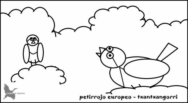 petirrojo (2)
