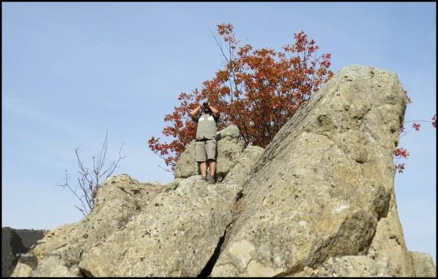 Oteando desde las rocas (9-12-2015)